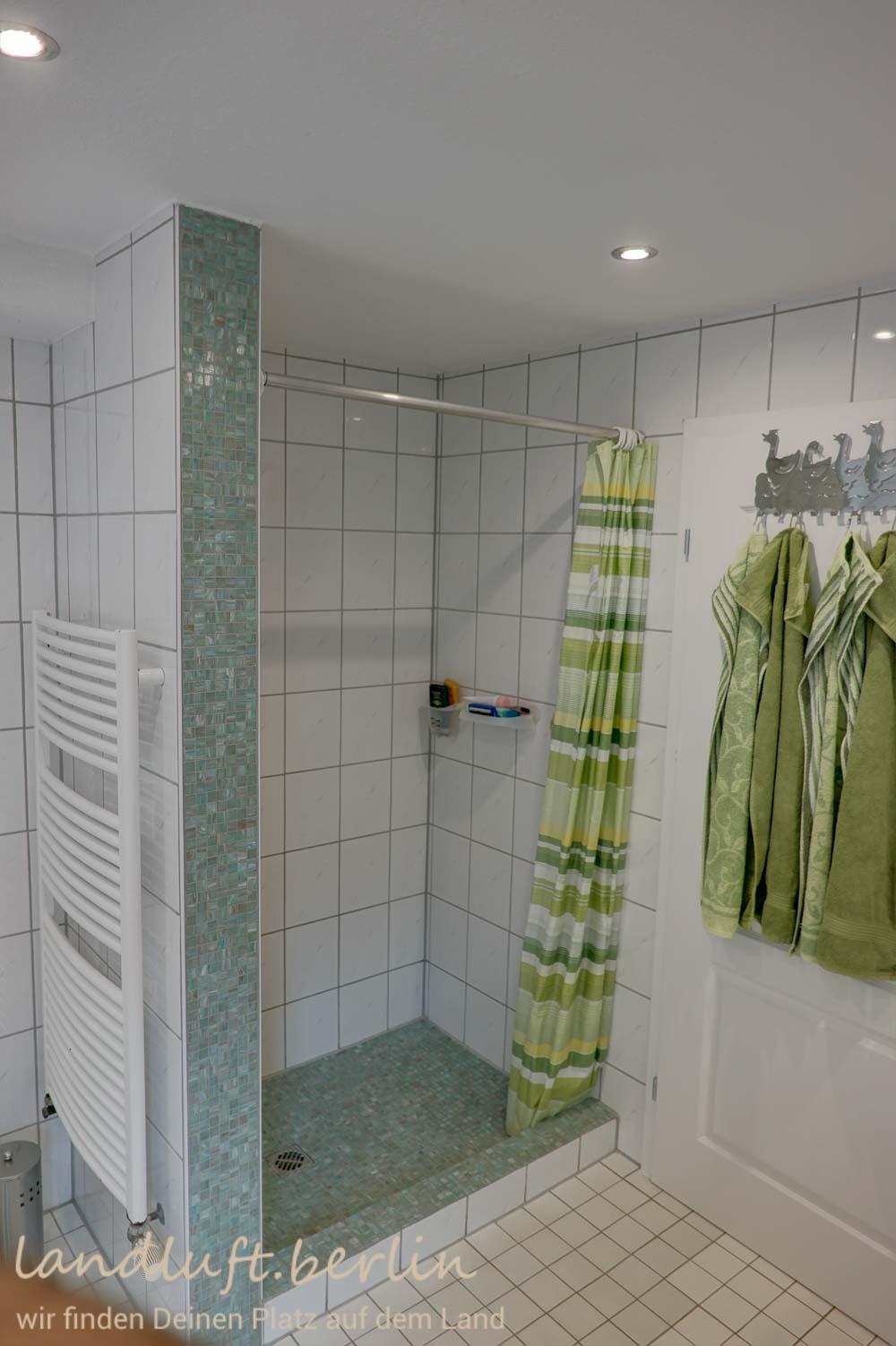 badezimmer im eg gemauerte dusche. Black Bedroom Furniture Sets. Home Design Ideas